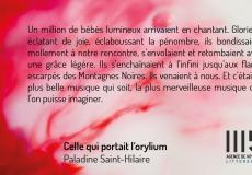 illustration-livre-celle-qui-portait-lorylium-0-90956200-1547141350